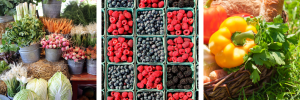 5 Reasons to visit your local farmers market
